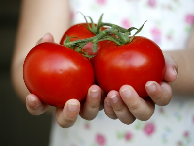 Girl_Holding_Tomatoes